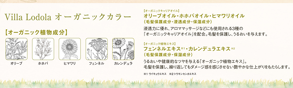 戸塚の美容院ITAL / 戸塚駅前徒歩3分 ダメージレスカラーイメージ